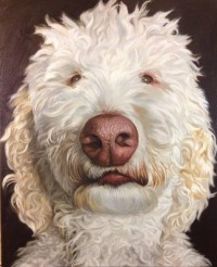 Kevin Campbell's DOG portraits, Brinkman Gallery