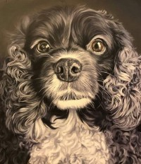 Kevin Campbell, DOG Portraits, at the Brinkman Gallery