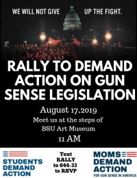 Rally for Gun Sense Legislation